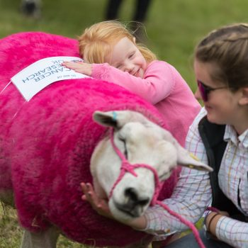 Dorset County Show pic 1