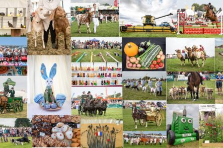 Agricultural Society Maintains County Show Through Alternative Series of Events