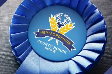 Herts County Horse Show Round Up